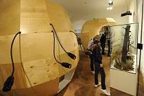 V prostorách ostravského muzea mohli lidé spatřit různé exponáty, ale také navštívit komentované prohlídky ke stálým expozicím.