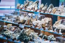 Mineralogická burza, spojená s výstavou přírodnin, fosilií a šperků na VŠB v Ostravě.