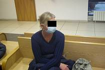 Žena díky prohlášení o vině vyvázla jen s podmíněným trestem.