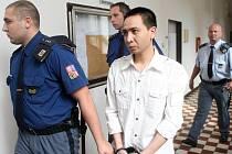 Senát Krajského soudu v Ostravě uložil čtyřiatřicetiletému Vietnamci Anh Tuan Tranovi za vraždu deset a půl roku vězení.
