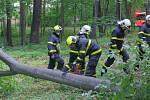 Hasiči ve středu odstranili hned dva nebezpečné stromy. Foto: HZS MSK