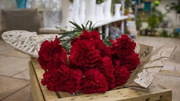 Mezinárodní den žen je oblíbený svátek, ke kterému již řadu let patří květiny a zejména karafiáty.