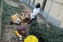 Babka trhovkyně zdobí zahradu mateřské školy v Dvořákově ulici v centru Ostravy.