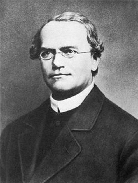 Přírodovědec, zakladatel genetiky a objevitel základních zákonů dědičnosti Řehoř Jan Mendel.