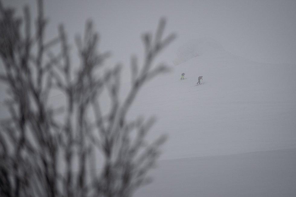 Skialpinisté v zakázané zóně poblíž Petrovych kamenů, 30. ledna 2021 na Ovčárně.