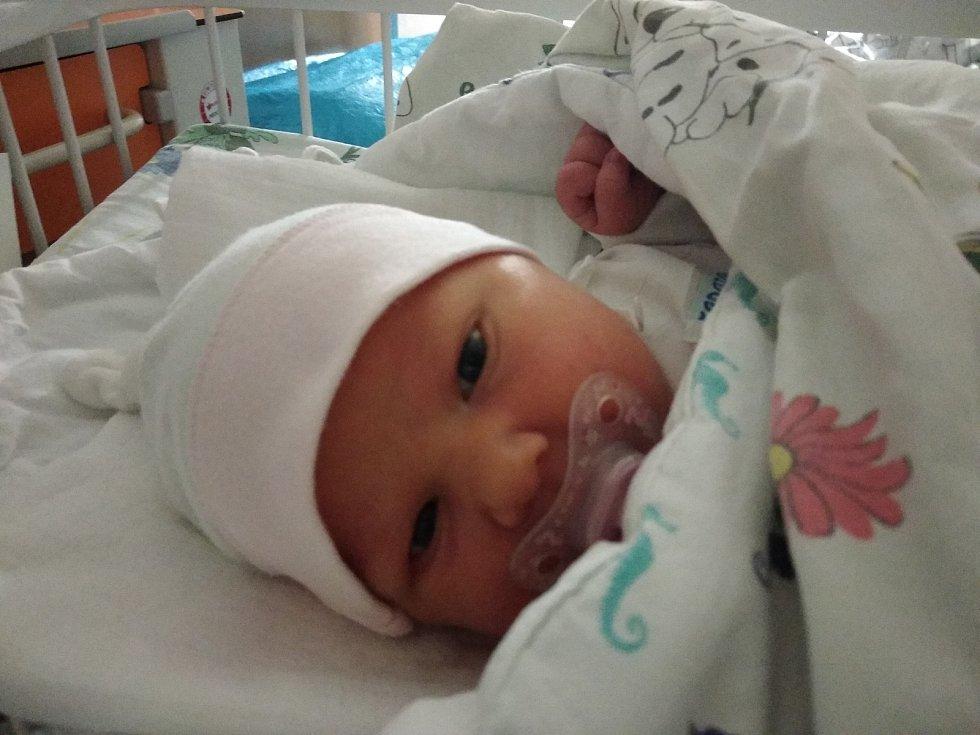 Beatka Labudová se narodila mamince Jarmile Labudové dne 3. 10. 2020 v NsP Karviné-Ráji. Měřila 51 cm a vážila 3 610 g. Foto: archiv rodiny