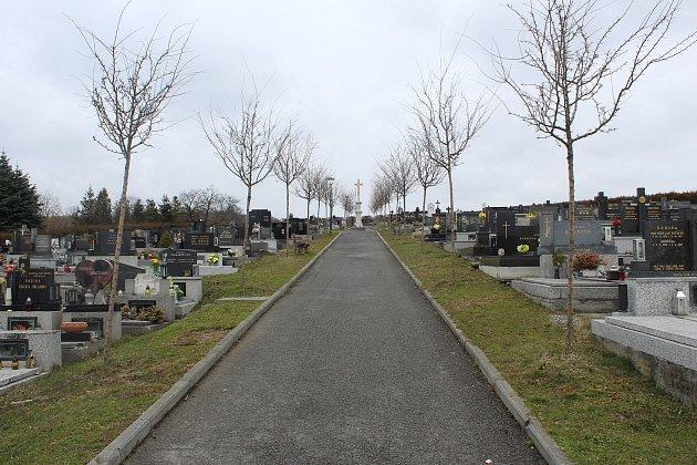 Hřbitov vPlesné prochází třetím rokem rekonstrukcí. Nyní se dělají přístupové chodníky khrobům.