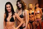V neděli 30. listopadu se v ostravském hotelu Imperial konal casting na Českou miss 2009.