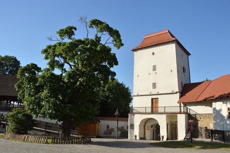 Koronavirus uzavřel turistické cíle i muzea. Ilustrační foto.