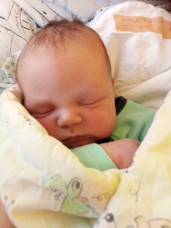 Viktor Lujka, Krnov, narozen 22. února 2021, míra 53 cm, váha 3 960 g. Foto: Pavla Hrabovská
