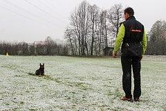 Pravidelný výcvik Martina Uřičaře a tříletého německého ovčáka Izzyho nenaruší ani nepřízeň počasí.