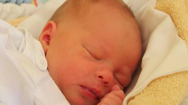 Tereza Kotláriková se narodila 3. září 2019, vážila 2,79 kilogramu a měřila 49 centimetrů. Rodiče Aneta a Otto z Opavy přejí své prvorozené dceři do života hlavně zdraví.