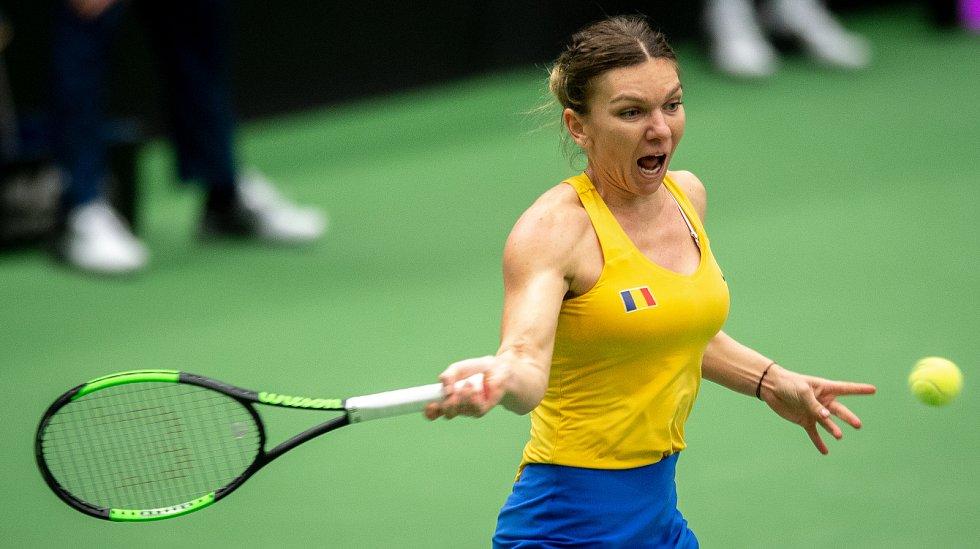 1. kolo tenisového Fed Cupu: Česká republika - Rumunsko, 10. února 2019 v Ostravě. Zápas mezi Karolinou Plíškovou a Simonou Halepovou.