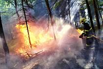 Zásah hasičů u sobotního požáru lesa mezi Ostravou a Krmelínem.