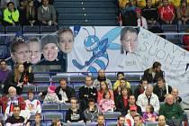MS ve florbale Ostrava, snímek z utkání Finsko-Švýcarsko