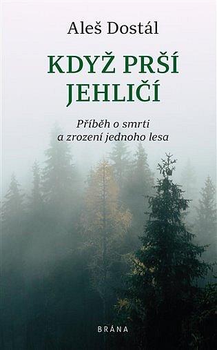 Přebal knihy Když prší jehličí Aleše Dostála.