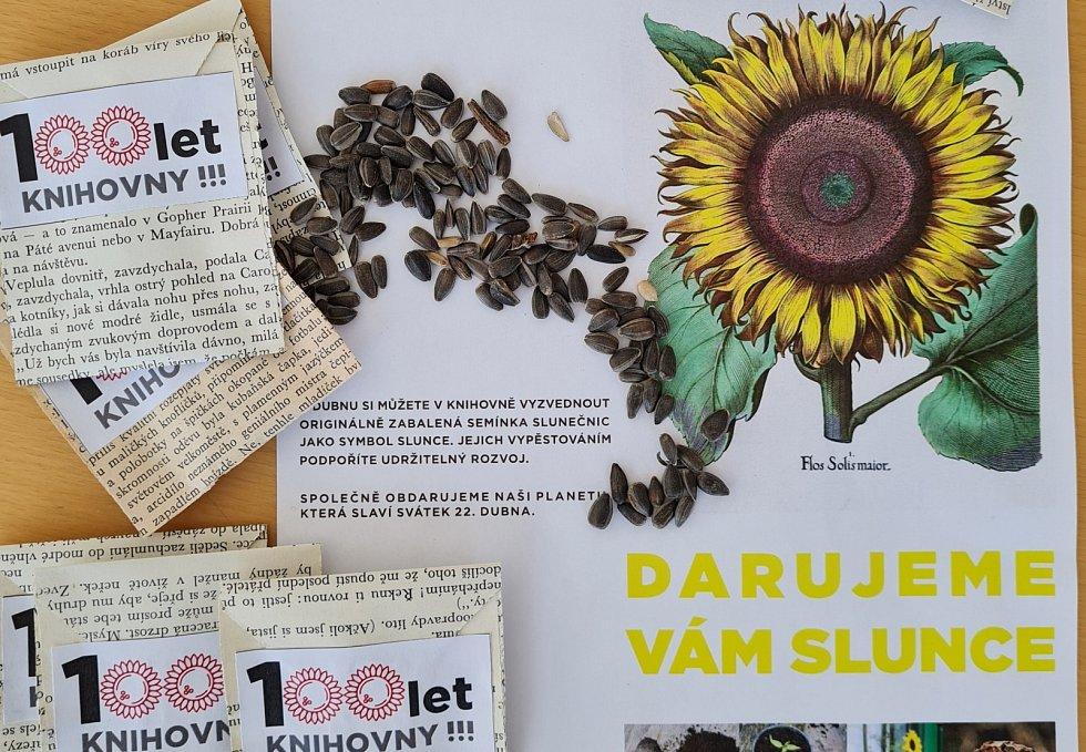 Knihovna rozdá semínka slunečnic