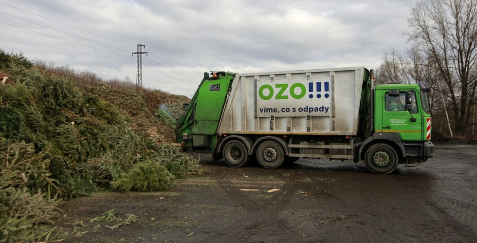 Vánoční stromky od popelnic se v Ostravě sváží po celý leden.