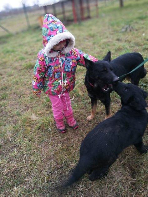 Samantha se Sallym začali dobře reagovat na děti a lidskou pozornost.