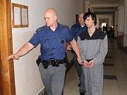 Krajský odvolací soud potvrdil šestiletý trest Lukáši Černému, který vloni v září brutálně znásilnil dvaadvacetiletou dívku.