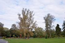 Výukový areál Bělský les.