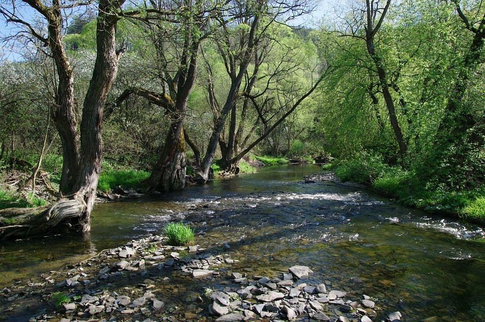 Od pramene protéká Odra až k ústí Budišovky (km 97,4 – po toku) na 15 km vojenským újezdem Libavá, koryto toku je vesměs nedotčeno jakoukoliv civilizací