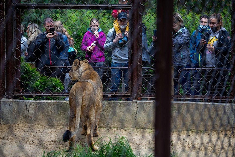 Zoologická zahrada Ostrava, poslední květnový víkend.