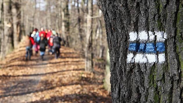 V ostravských přírodních rezervacích Rezavka a Štěpán byly v sobotu otevřeny naučné stezky s informačními panely.