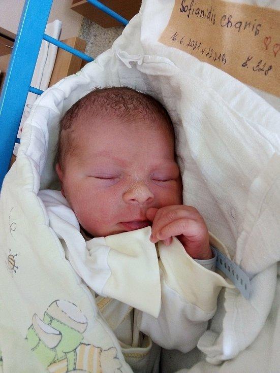 Charis Sofianidis, Krnov, narozen 16. června 2021, míra 47 cm, váha 2990 g Foto: Pavla Hrabovská