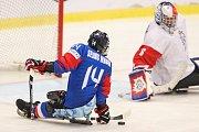 Mistrovství světa v para hokeji 2019, Korea - Česká republika (zápas o 3. místo), 4. května 2019 v Ostravě. Na snímku (zleva) Jung Seung Hwan (KOR), Vapenka Michal (CZE).