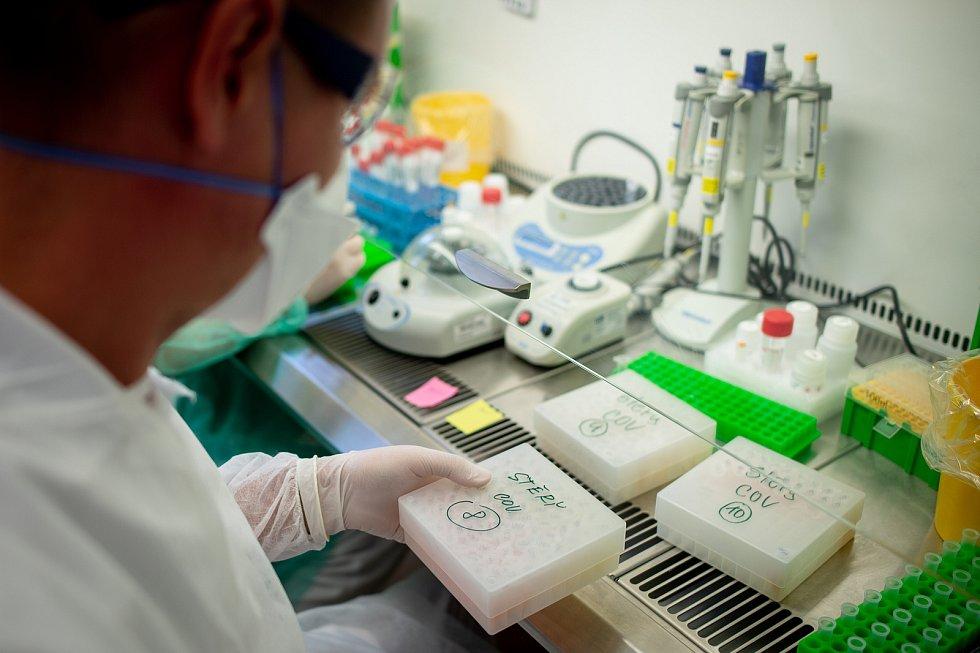 Testování koronaviru v Ostravě, laboratoř AGELLAB. Ilustrační foto.