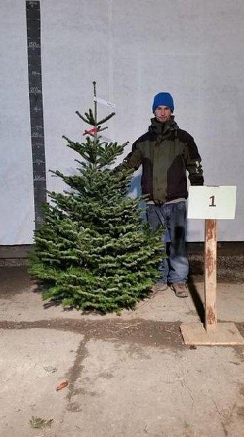 Takto se fotí vánoční stromeček pro e-shop.