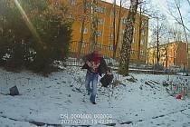 Strážníci v Ostravě řešili případ muže, který se měl uspokojovat ve křoví.
