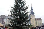 Vánoční strom v Ostravě na Masarykově náměstí.