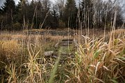 Přehrada Šance, listopad 2015. K maximální hladině chybí ve vodní nádrži skoro 20 metrů.