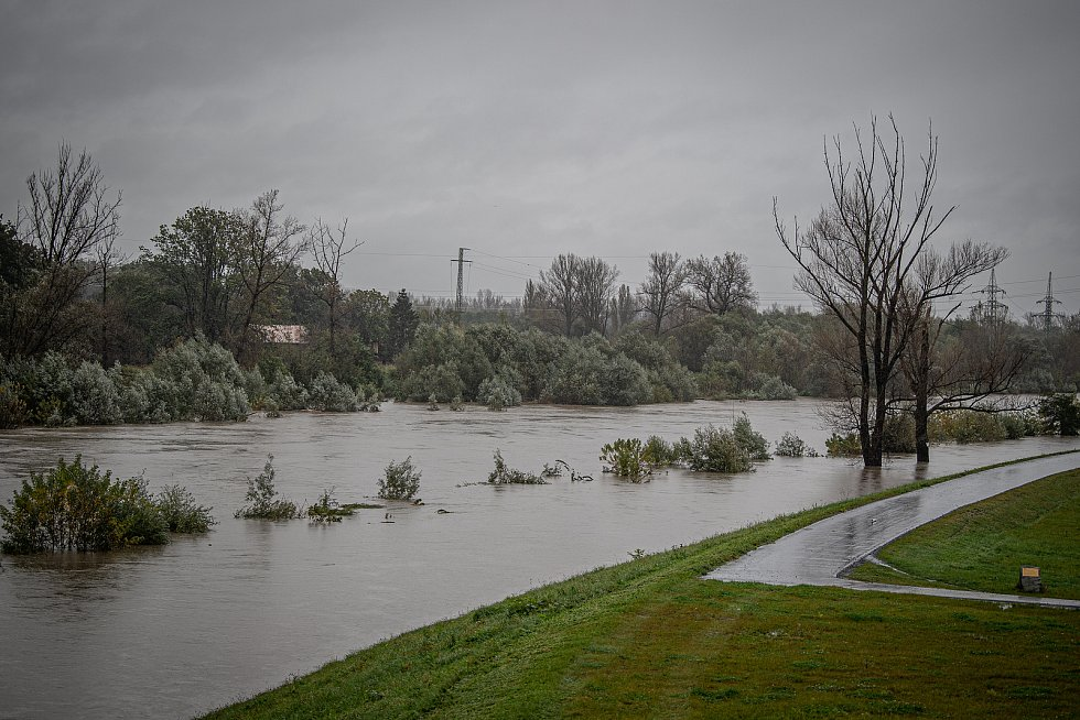 Noční deště zvedly hladiny řek na severní Moravě, 14. října 2020. Rozlitá řeka Odra poblíž Koblova.