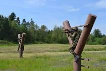 Náročné cvičení mají za sebou záložníci z Ostravy, kteří se vrátili z vojenského prostoru Libavá.