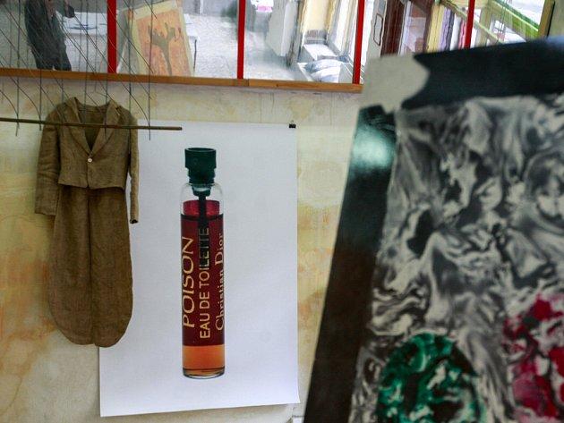 Snímek z instalace výstavy Přípravný portrét Mladé dívky.