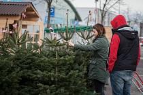 Prodej vánočních stromků u nákupního střediska.
