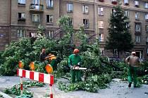 Ilustrační foto z kácení stromů na Budovatelské ulici v Porubě