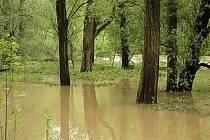 Řeka Opava v Ostravě-Třebovicích během květnových povodní.