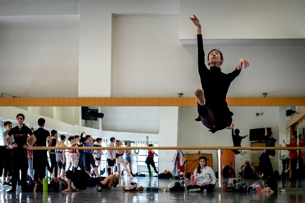 Jeden den s baletkou Shino Sakurado, 5. dubna 2019 v Ostravě. Shino na ranní tréninku.