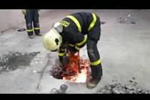 Záběry z videa Útvaru pro odhalování organizovaného zločinu.