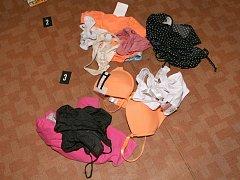 Při domovní prohlídce policisté zajistili dívčí spodní prádlo, mobilní telefony, pornosnímky a erotické časopisy.