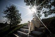 Sochu svatého Františka z Assisi mohou vidět lidé, kteří se vydají na procházku po nově zrekonstruované farské cestě v Ludgeřovicích. Autorem díla je opavský sochař Daniel Klose.