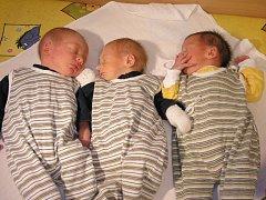 Pokud se vám narodí trojčata, nedoplatíte se!