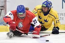 MS v para hokeji v Ostravě. Na snímku (vlevo) Tomáš Kvoch.