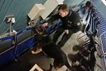 Policisté začali s pyrotechnickými prohlídkami stadionů.