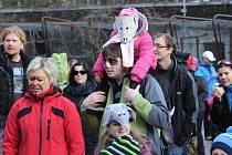 Nová a hezká tradice vznikla v sobotu v ostravské zoo. K množství akcí, které se zde pravidelně konají, přibyla další – masopustní průvod zvířecích masek. Do něj se zapojily desítky dětí, které přišly do zahrady se svými rodiči.