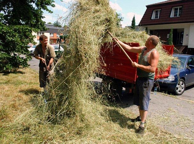 Sečení trávy v Mariánských Horách konečně začalo